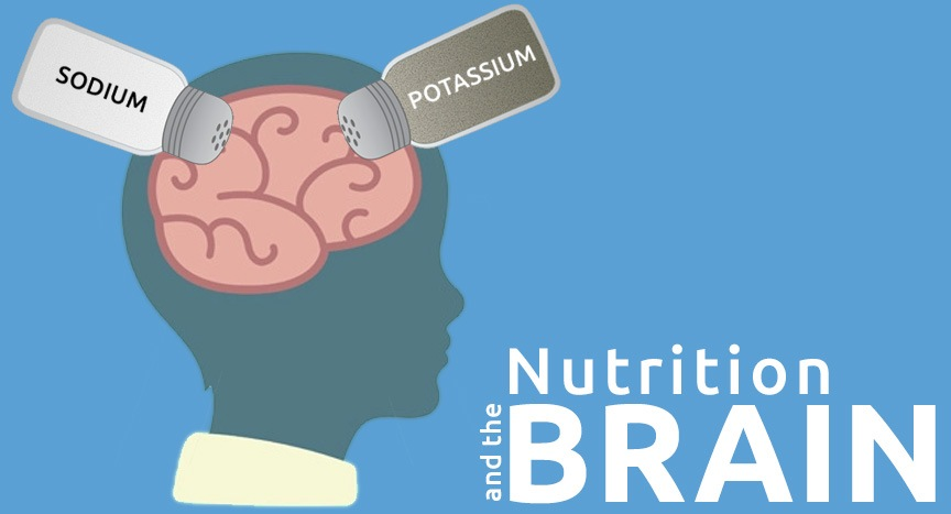 The Sodium Potassium Pump - Nutrition and the Brain